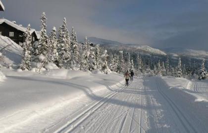 Clases de Esquí de Fondo en el P N Sierra Guadarrama » Tuawo