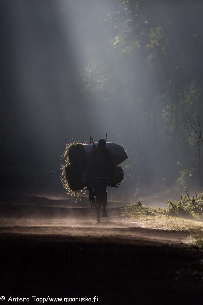 Cyclist by Antero Topp