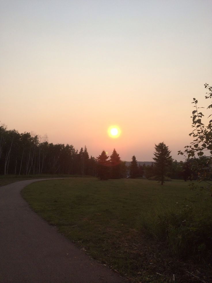 Early morning walk on birchwood trail . Fort McMurray august 2014