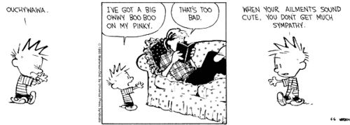 calvin and hobbes we can always meet again in dreams