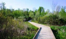 Bysterveld Park; Wayland, MI