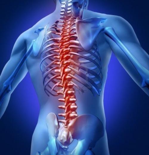 Всем известно, что слабыми местами пауэрлифтеров являются спина, колени и суставы. Кто-то из нас может быть уже сталкивался с такой проблемой, когда в один прекрасный день появляется сильная боль в сп...