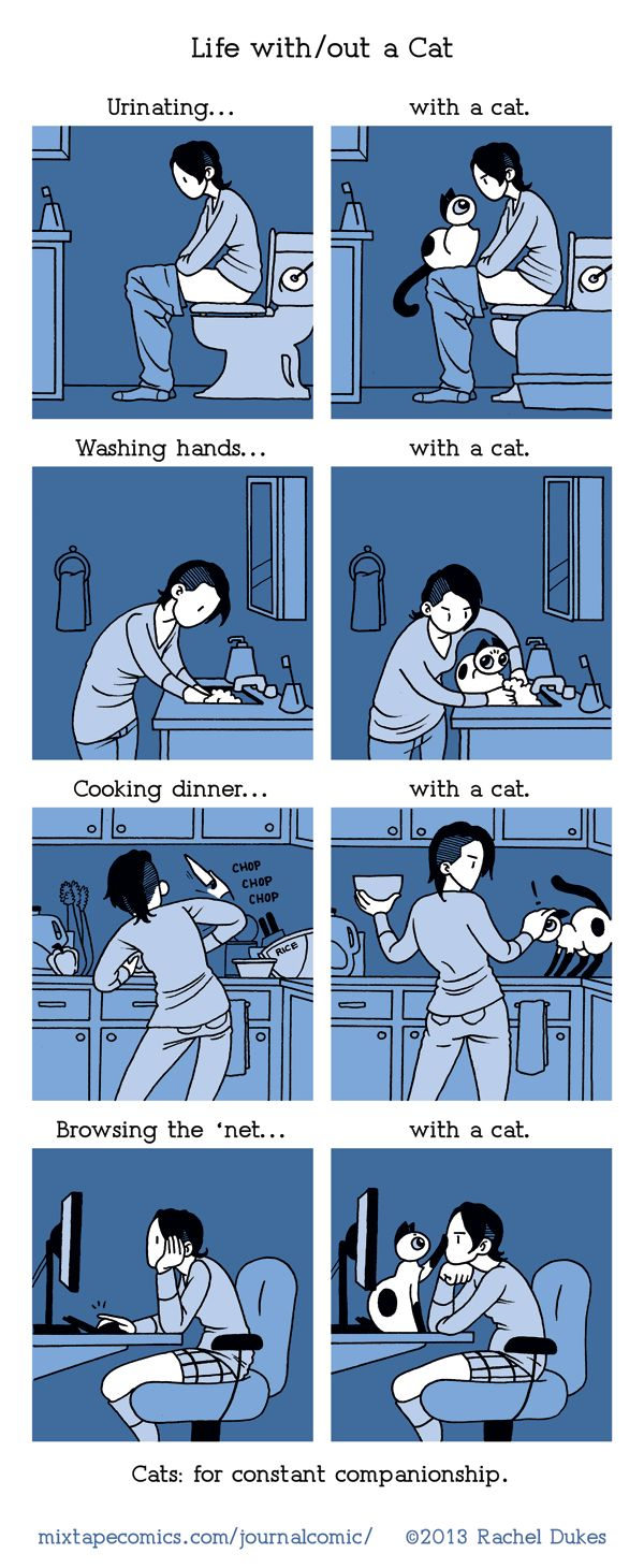 {Life with/out a Cat} - Yep!
