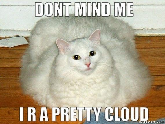 I R A Pretty Cloud *: Fatcat