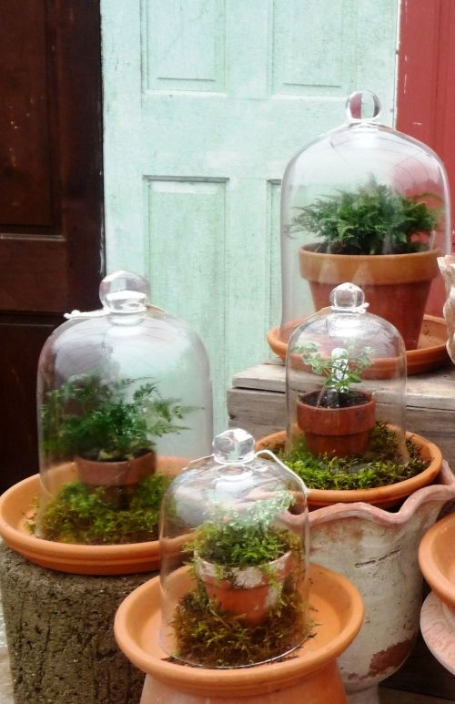 clay pots under glass