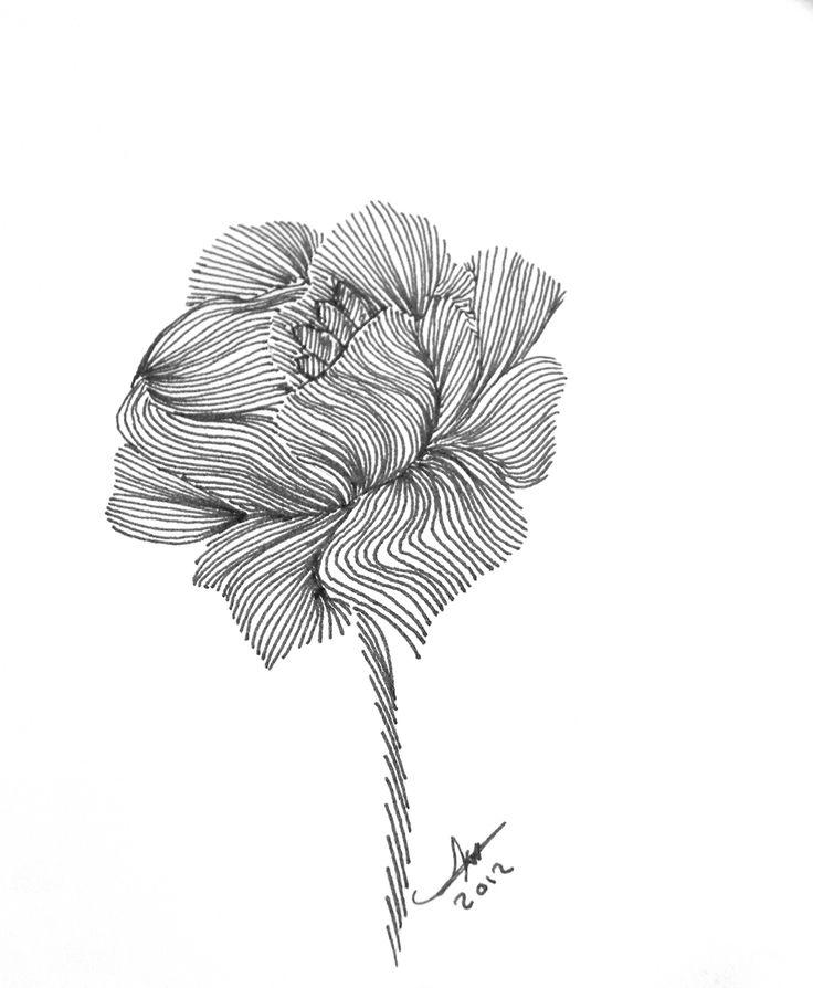 Image detail for -الموضوع: Zentangle ART ~