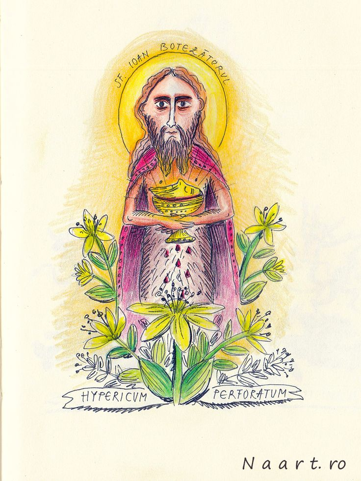 Hypericum Perforatum #Saint John's wort #folkart #naart.ro