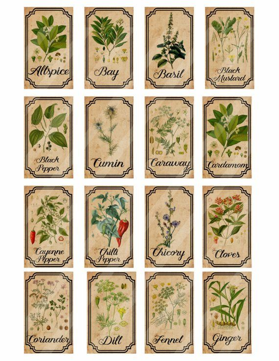 Herb And Spice Apothecary Labels Digital Printable Vintage Fave