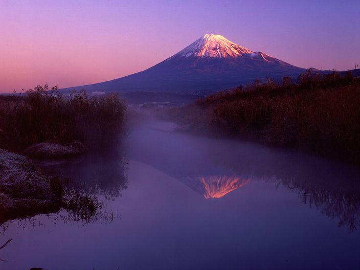Purple Fuji