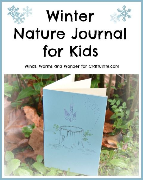 Toddlers Winter Crafts Nature Agcrewall