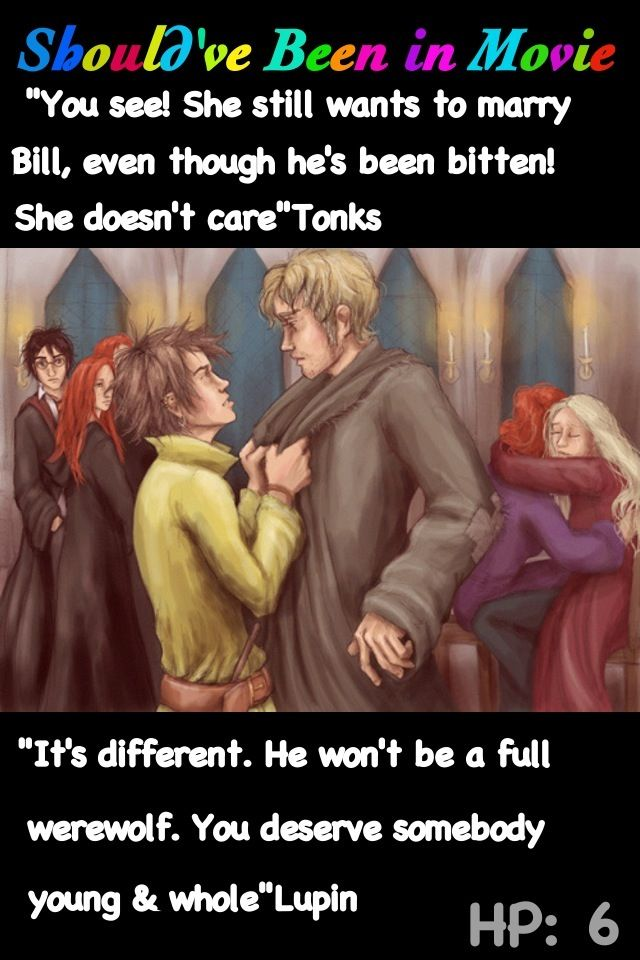 Harry Potter and the Half-Blood Prince Should've Been in Movie Tonks Lupin Romance hospital wing Bill Weasley Fleur Mrs. Weasley hug