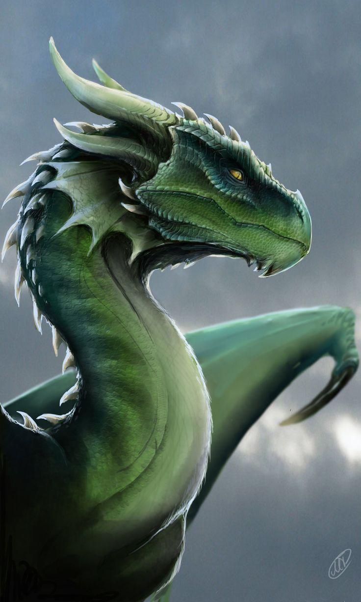 chic dragon www katja ridderbusch com