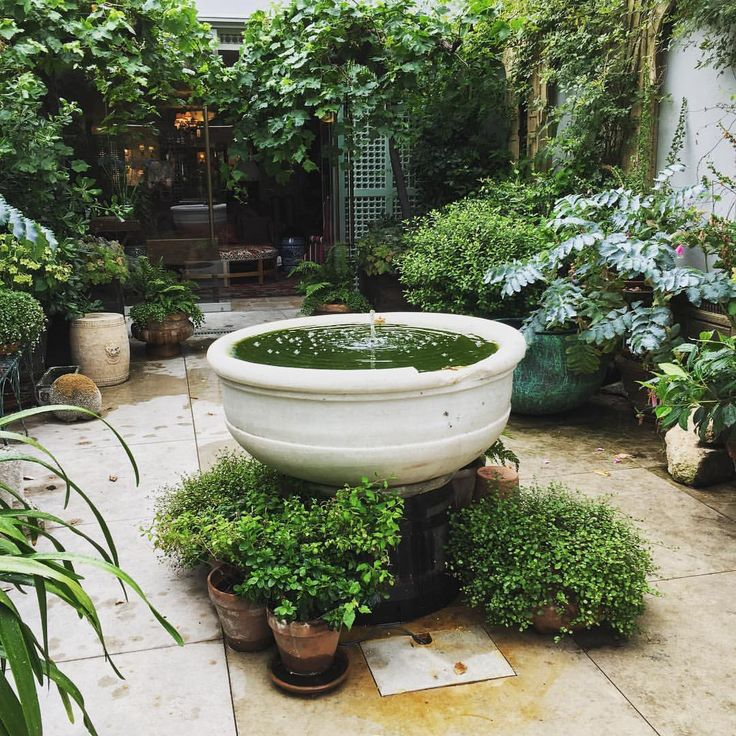 Best 25 front courtyard ideas on pinterest for Decor 718 container