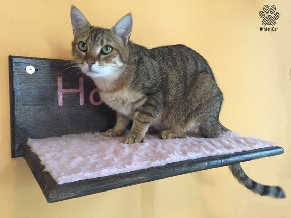 FLUFFY SHELF with carved name and glitter - Furniture for cats