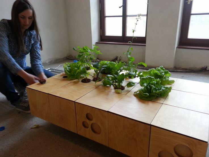 Vegetable table :), Maria Jaworska