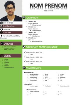 Cv Exemple - CV Gratuitement Sous Format Word ou PowerPoint