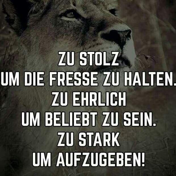 STOLZ, EHRLICH, STARK