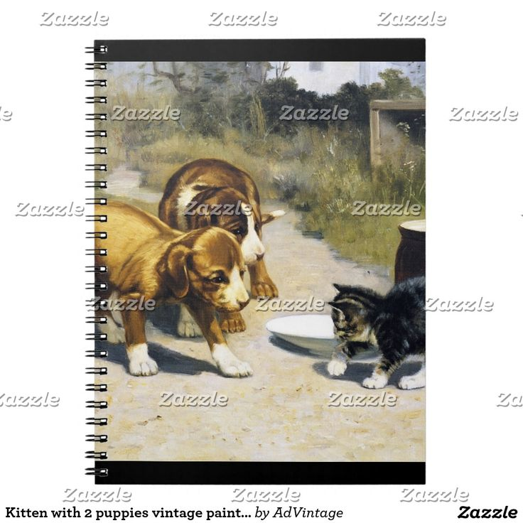 Kitten with 2 puppies vintage painting spiral notebook