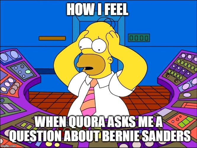 Has Anyone Found Dirt On Bernie Sanders Internet Marketing Strategy What Is Seo The Simpsons