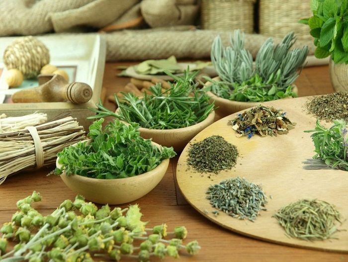 Τα 22 σημαντικότερα ελληνικά βότανα: Ιδιότητες και χρήσεις το 80% του παγκόσμιου πληθυσμού χρησιμοποιεί αποκλειστικά φαρμακευτικά φυτά, ενώ περίπου το 50% τ