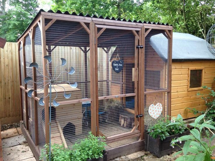 All sorts of rabbit housing idea for you to view. Great ideas, lots of fun…