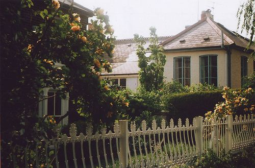 aple tree!!Front Gardens, Gardens Inspiration, Riverside House, Picket Fence, Art, White Fence, Cottages,  Pale, Gardens Delight