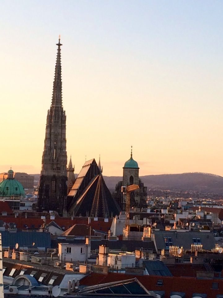 Samen met vinoloog Theo Gerrits geniet u tijdens deze korte wijnwandelreis van de culinaire geneugten van Wenen. Meer informatie: http://www.snp.nl/reis/oostenrijk/wenen_wijnreis