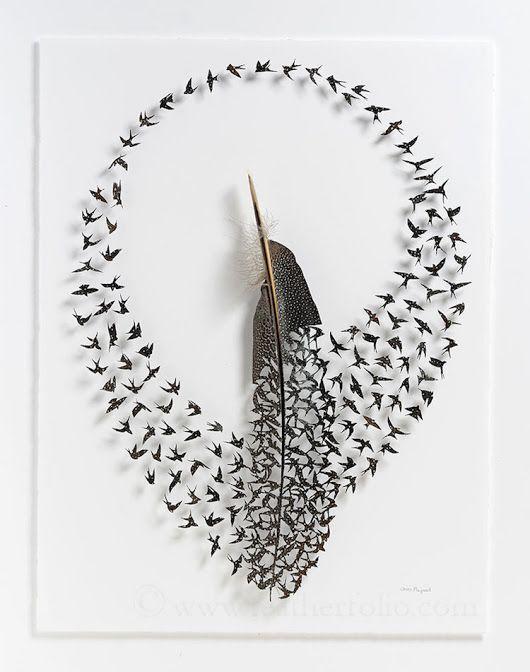 Stormi di uccelli prendono forma da una singola piuma. Le miniature di Chris Maynard
