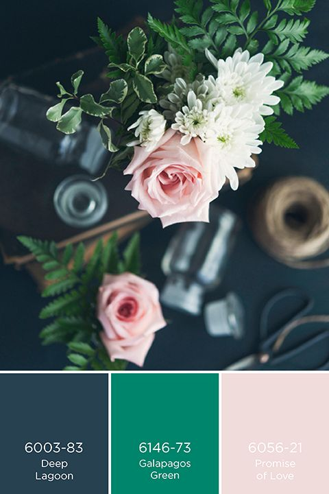 20 best Palettes de couleurs images on Pinterest - preparer un mur pour peindre