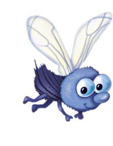 1000 images about snug as a bug on pinterest clip art - Dessin de mouche ...