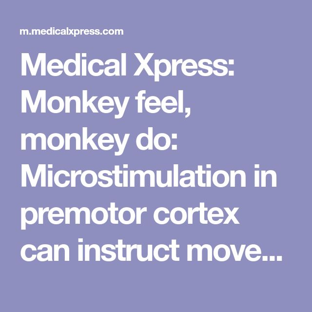 Medical Xpress: Monkey feel, monkey do: Microstimulation in premotor cortex can instruct movement