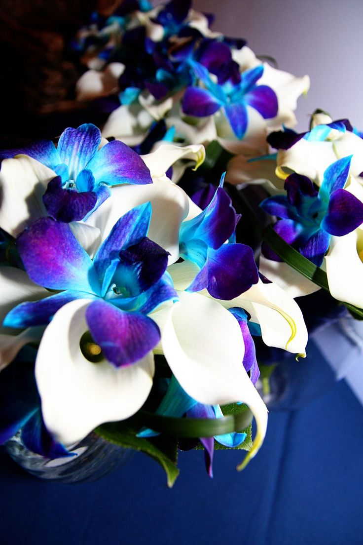 I loved our wedding flowers, blue orchids  mini calla lilies. Photo provided by Lundy Photography