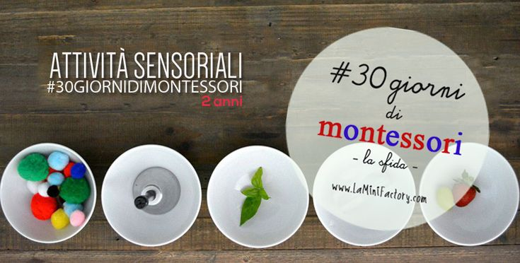 MiniFactory: Attività sensoriali - 2 anni five Sensory activities for toddlers - Montessori activity