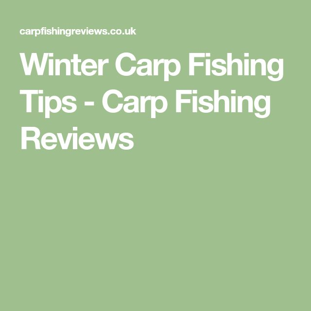 Winter Carp Fishing Tips - Carp Fishing Reviews