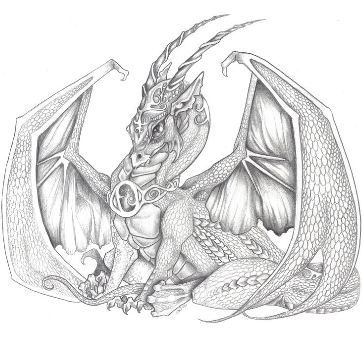 Images for evil dragon drawings black and white