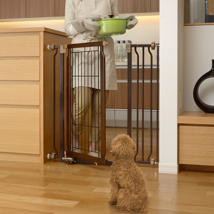 Have your hands full with groceries or dog food? Richell's Hands-Free Pet Gate allows you to open the pet gate without using your hands.  Item# 94903