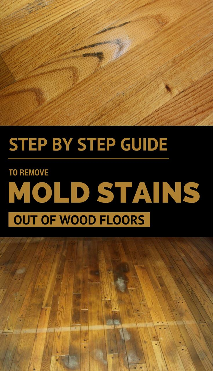 It is a tedious workaround, but you can do it. Keep reading and see my step by step guide to remove mold stains out of wood floors.