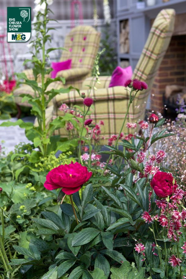 17 best images about chelsea on pinterest gardens for Chelsea flower show garden designs