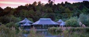 Water Edge Cafe - Arundel Wetland Centre