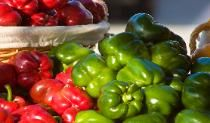 There are a variety of free farmers markets throughout Orlando and Central Florida. Orlando on the Cheap will guide you to one in your community.