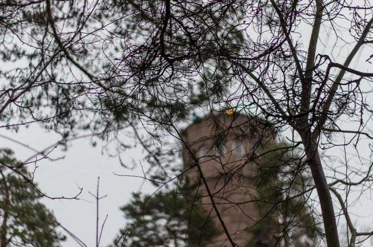 Wie wir in Tampere die Erleuchtung fanden