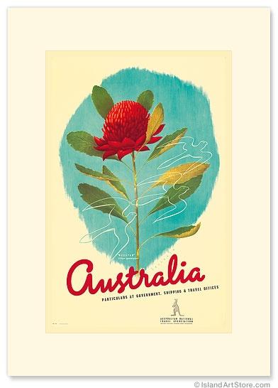 Australia Shipping & Travel - Waratah Red Flower - Premium Vintage Collectible Blank Greeting Card