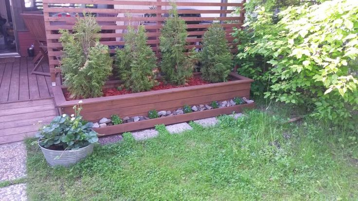 Meidän puutarha