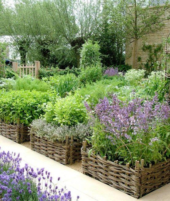 Örtagård med flätade upphöjda odlingsbäddar