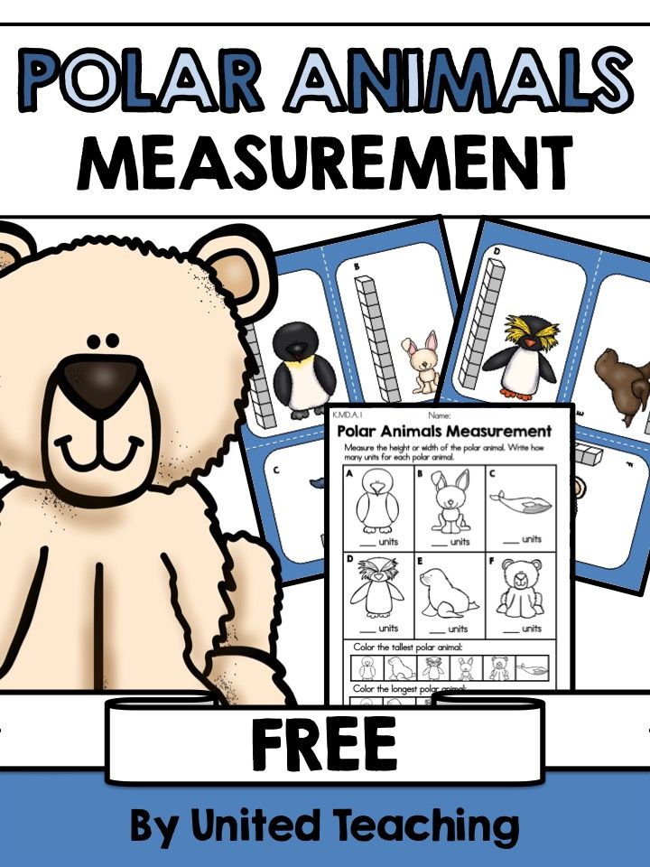 Free Polar Animals Measurement Math Center >> Great as an addition to a unit on Polar Animals