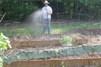 Top Five Mistakes in the Vegetable Garden | May 2015 eNewsletter