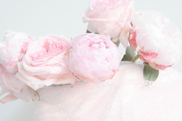 petticoat pink