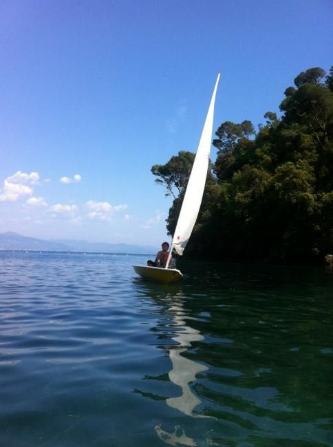 Wanna learn how to sail? Try our fantastic laser!