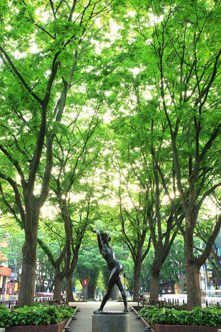 杜の都仙台。定禅寺通りは緑がいっぱい。仙台の見所一覧。