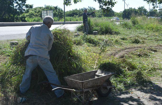 Servicio PCTQ inició limpieza profunda en nueve zonas de Puerto Cabello